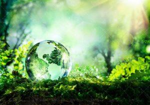 وکلای سراسر کشور در دادخواهیهای محیط زیستی فعال باشند